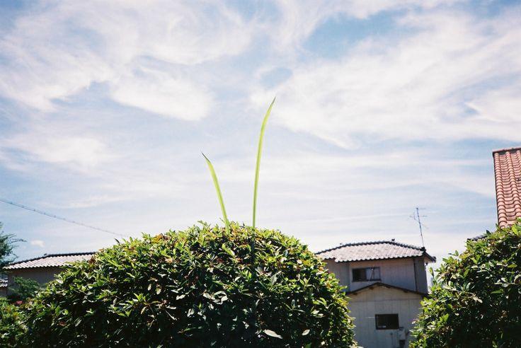 写真ワークショップ「夏の Love Letter」in EPISO - 福井から全国へ出張カメラマン|AURACROSS Photo Direction