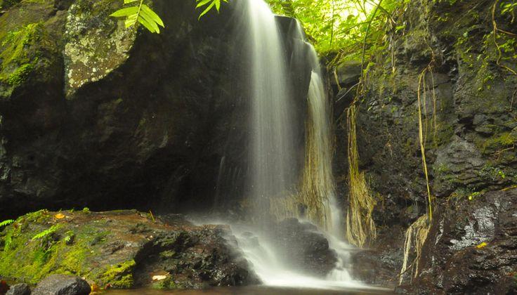 Moorea - Polinésia Francesa | Destinos | CVC Viagens