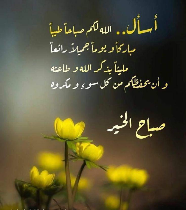 صباح الخير Good Morning Photos Good Morning Greetings Good Morning Flowers