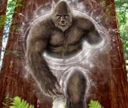 Here are some other awesome Bigfoot news and stories from several sources.