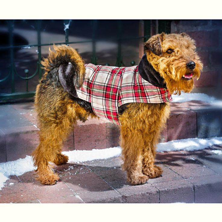 "Kabátek pro psa ""Charlie"" S   Magnet 3Pagen #magnet3pagencz #3pagen #animals"
