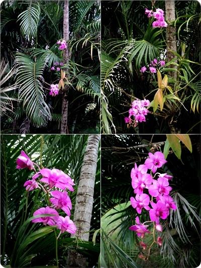 http://www.vitrineaugusta.com/2012/03/simplicidade-saia-longa-preta-blusinha.html