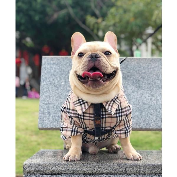 Burberry Style Paid Summer Cotton Shirt Costume For Small Medium Dogs Dogs Dog Exercise Bored Dog