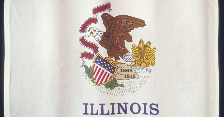 El costo promedio de vivir en Illinois. El estado de Illinois es un gran lugar para vivir, si te gusta la vida de la gran ciudad o una atmósfera de pueblo pequeño. El estado de la pradera es el hogar de la ciudad de Chicago y todas sus grandes atracciones, así como también las pequeñas ciudades no incorporadas como Galena y Amish Acres. Podrías pagar más para vivir en Illinois que en ...
