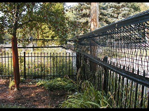 1000 Ideas About Cat Fence On Pinterest Cat Enclosure