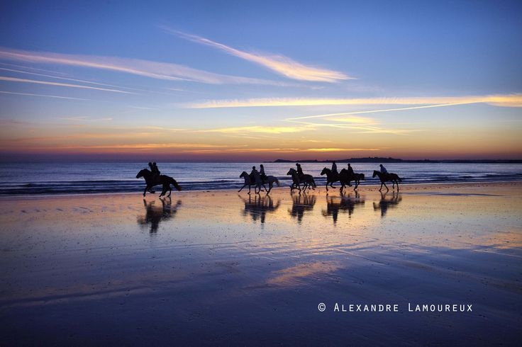 La presqu'île de Saint-Cast-le Guildo ouvre ses grands espaces aux cavaliers pour de longues balades à travers l'arrière-pays verdoyant, ou sur les plages de sable fin !!! #balade #chevaux #sable #coucherdesoleil #bretagne #cotesdarmor #saintcast #saintcastleguildo