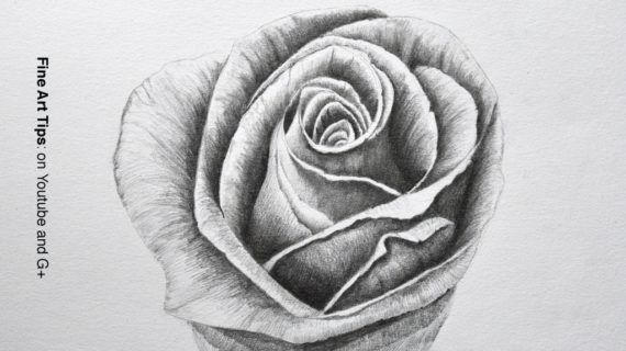 Pencil Drawings Of A Rose Drawing Flowers How To Draw A Rose With Pencil Fine Art Tips