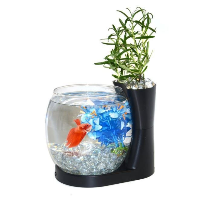 25 Best Ideas About Aquarium Led On Pinterest Aquarium