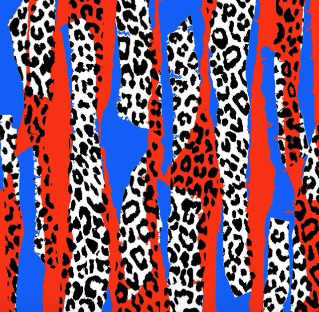 Leopard Strips by Sarah Bagshaw