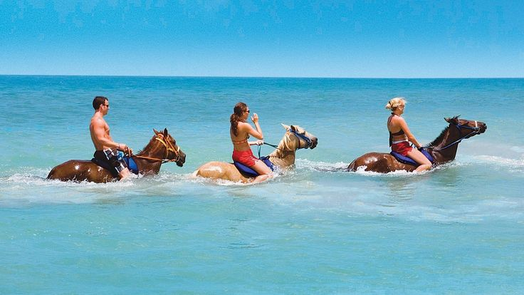 Go horseback riding in the ocean