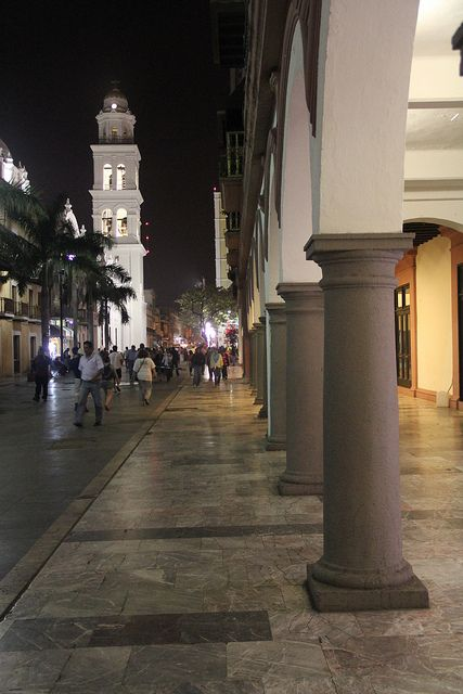 Veracruz, son tus noches diluvio de estrellas...