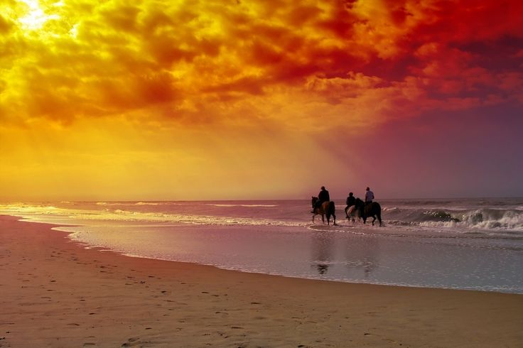 Horse Back Rides On The Beach