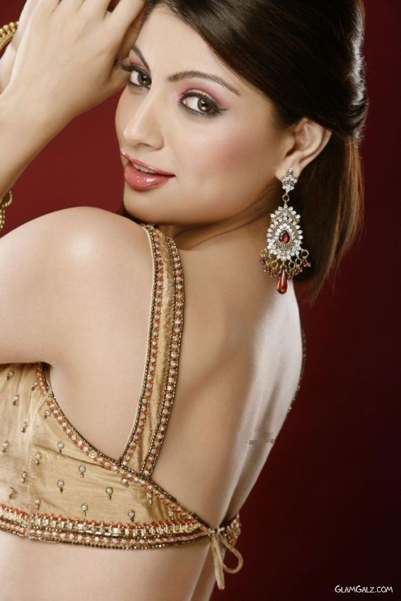 lovely open back saree blouse