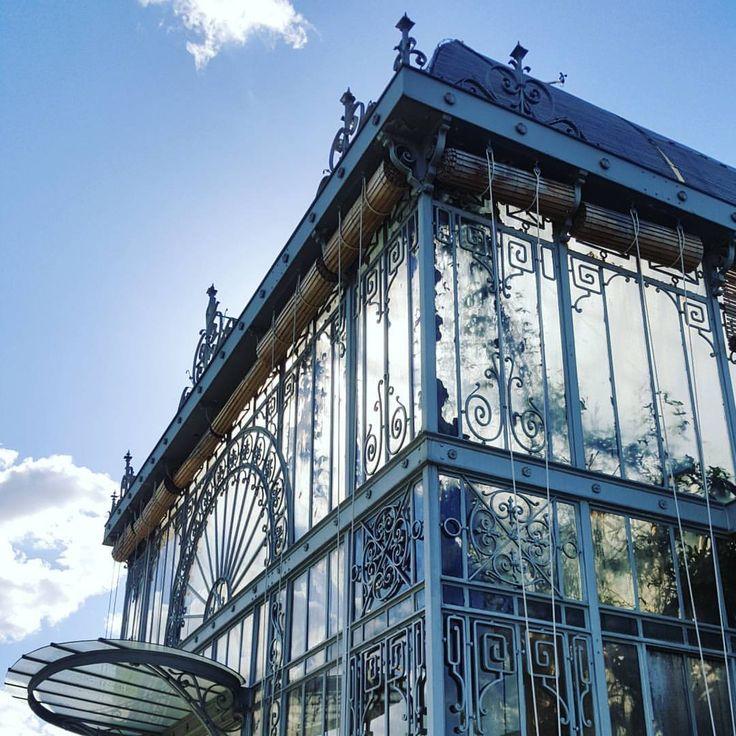 Nantes, Jardin des plantes, le soleil enfin... #nantes #jardindesplantesnantes #botanicalgarden #spring