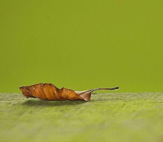 minimalist art photography