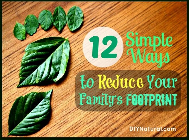 reduce your ecological footprint essay Do you know how much water was used to grow your food and to produce your   then, takes steps to reduce your water footprint or support activities that help.