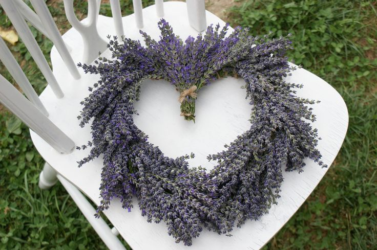 Lavender - preparing for the big day :)