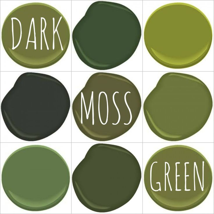 38 Best Paint Color Schemes Celery Green Images On: Best 25+ Olive Green Paints Ideas On Pinterest