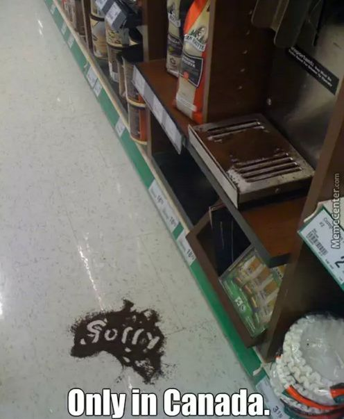Only in Canada: someone spilt ground coffee on the store floor & wrote 'sorry' in it.