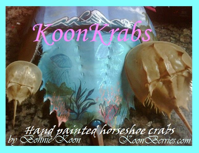 KoonKrabs~ Hand Painted Horseshoe Crabs by Bonnie Koon KoonBerries: Painted Horseshoe, Koon Koonberries, Horseshoe Crabs, Bonnie Koon