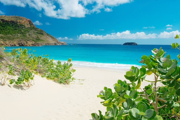 A Beginner's Guide to St. Barth's