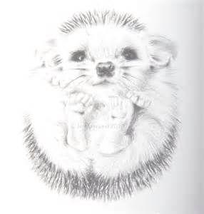 How To Draw A Baby Hedgehog Learn To Draw Nursery Print Art
