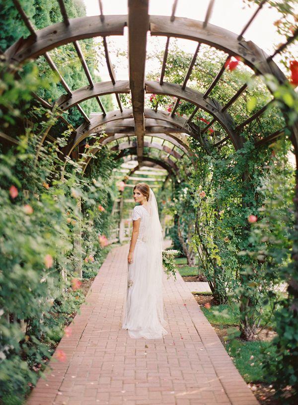Rose Arbor Wedding Portraits   Ciara Richardson
