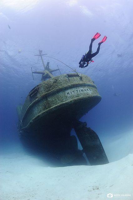 The Kittiwake in Grand Cayman www.flowcheck.es  Taller de equipos de buceo #buceo #scuba #dive
