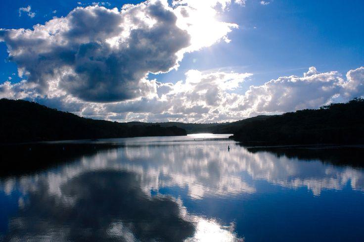Manly Dam, Manly Vale NSW Australia  Copyright of Jo Thom