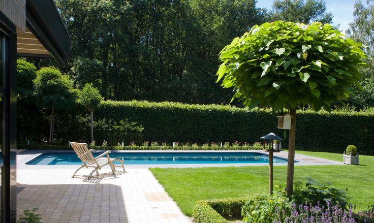 Relaxare, inot, picaturi de apa, toate acestea pentru a avea o oaza de prospetime in gradina dumneavoastra.