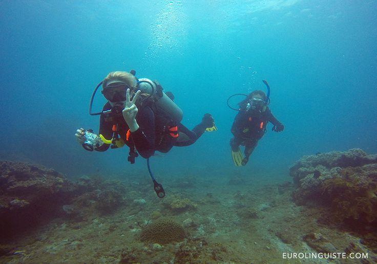 Scuba Diving with Manta Manta Diving in Bali, Indonesia   Eurolinguiste