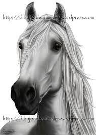 dibujos de caballos a lapiz - Buscar con Google