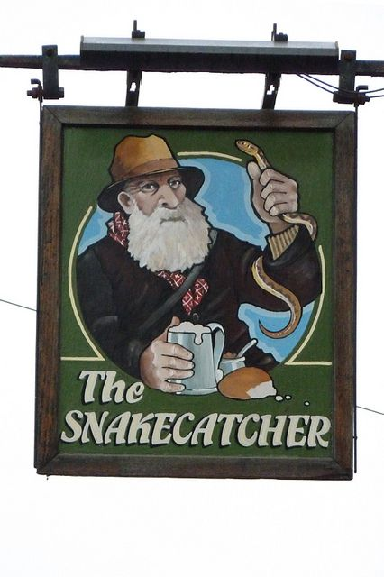 Snakecatcher, Brockenhurst | Flickr: Intercambio de fotos