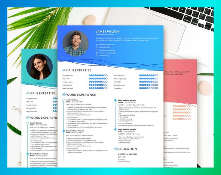 Professional resume cv template for word two page resume