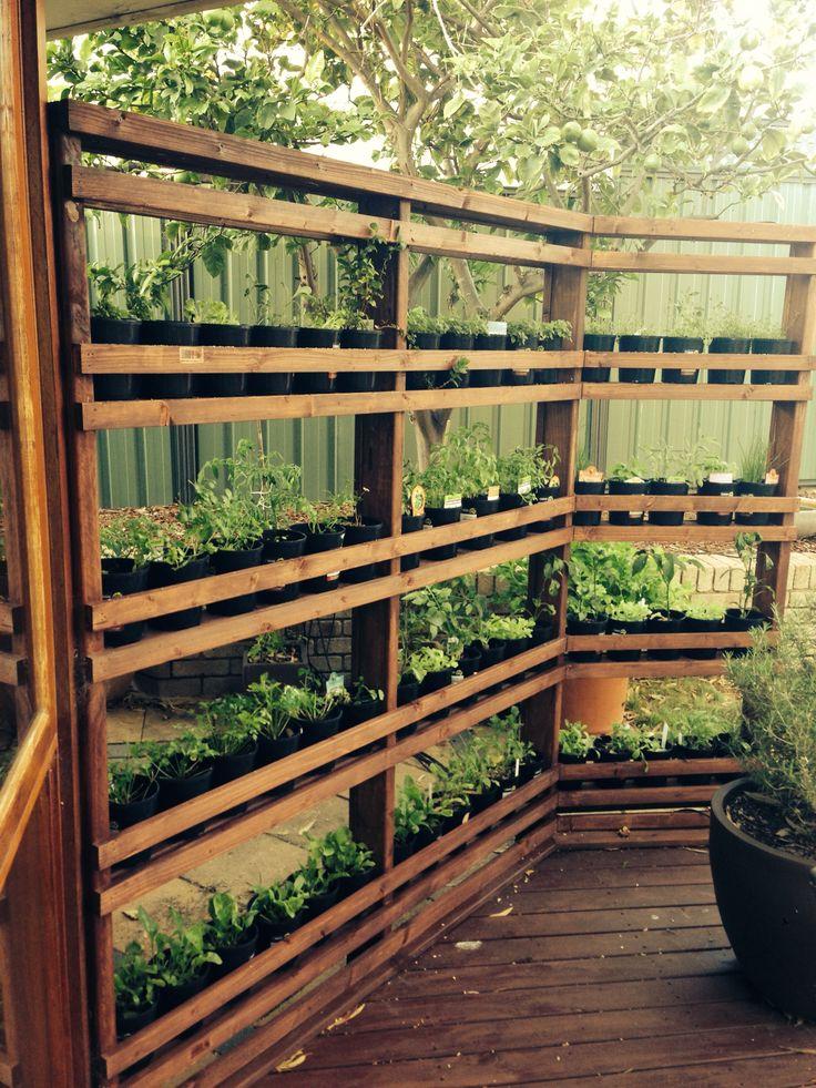 Garden Living Wall Timber Rack