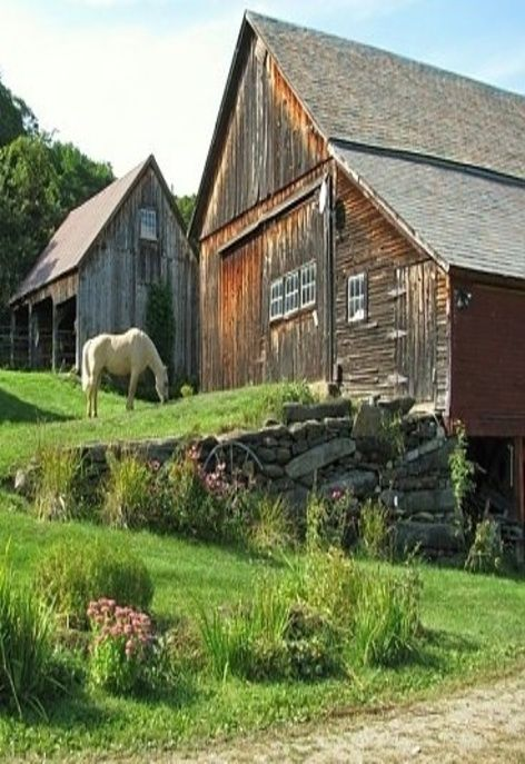 Barn With Horse Roaming Free