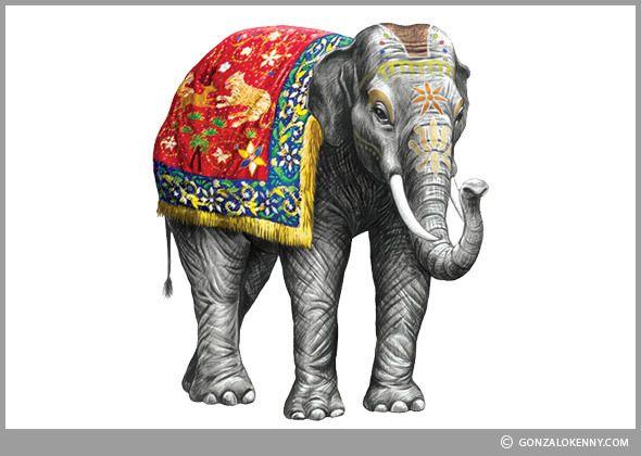 Elephant - Brand Illustration   Albahaca - Fideos Don Vicente   Ilustraciones para rediseño de packs  Ilustración para Envases - Ilustración de Empaques - Packaging Illustration Markham Indian Tonic