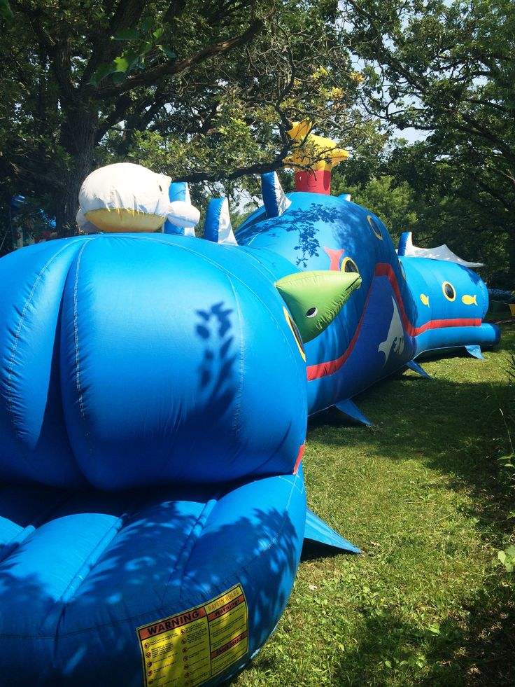 Wilbur the Obstacle Coarse Wind Tunnel. Step inside this fun tunnel to find surprises and your way out. Perfect for kids and family events.Chicago Party Rentals.