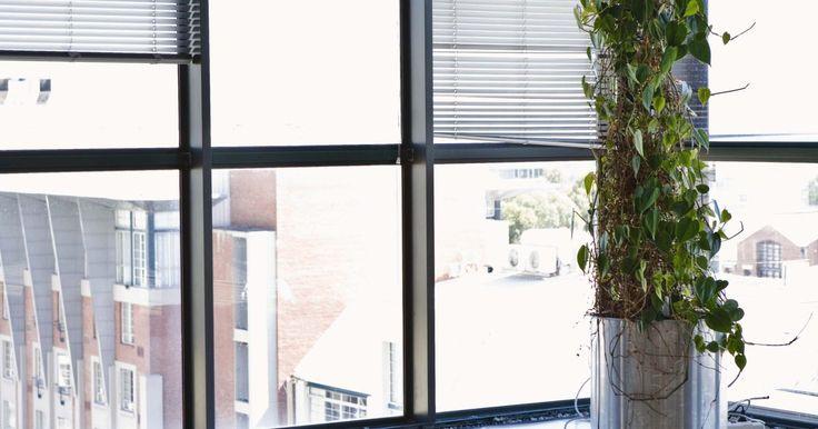 Cómo colocar cordones nuevos en persianas enrollables. Las persianas enrollables se ven muy bien en las ventanas, pero sus cordones tienden a deshilacharse y romperse, necesitando un reemplazo. Mientras que subes y bajas las cortinas notarás su respuesta si las correas interiores necesitan ser reemplazadas. Reemplazar la correa de este tipo de persianas es fácil y toma sólo un poco de tiempo.