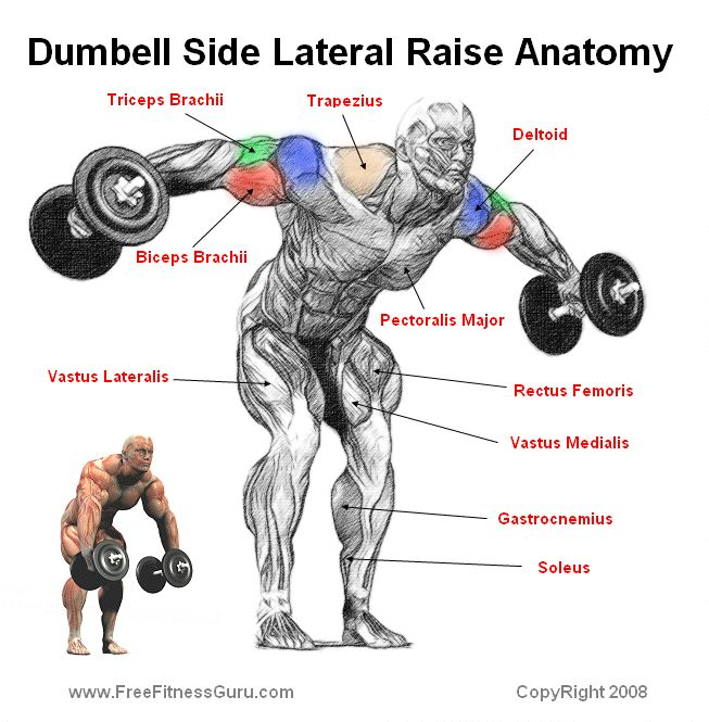 dumbell lateral side raise