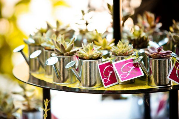 {favor file} succulents in water cans. so adorbs. #wedding