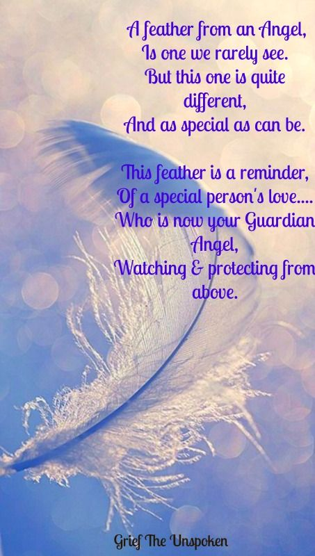 A feather from an Angel, Is one we rarely see. But this one is quite different, And as special as can be. This feather is a reminder, Of a special persons love.... Who is now your Guardian Angel, Watching & protecting from above.<3 t u