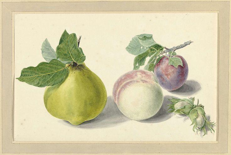 Een peer, perzik, pruim en noten, Elisabeth Geertruida van de Kasteele, Michiel van Huysum, 1700 - 1800
