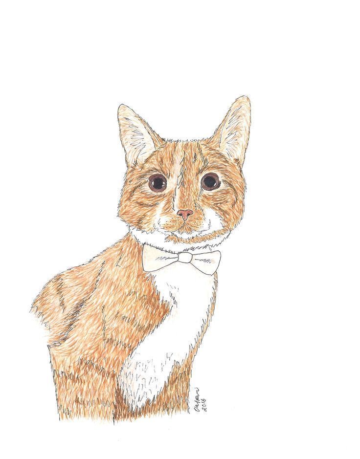 Ginger Cat portrait, Aquarelle by Valpuri