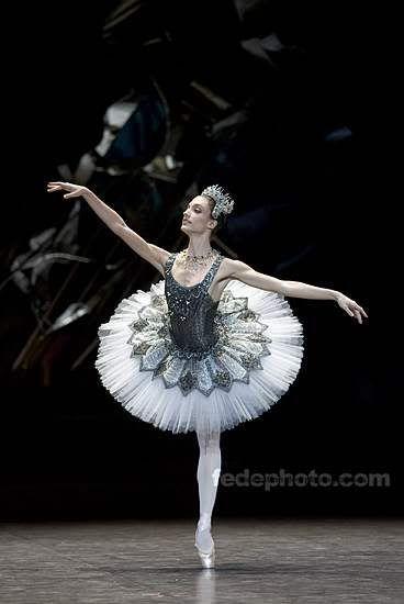 Image result for paris opera ballet tutu