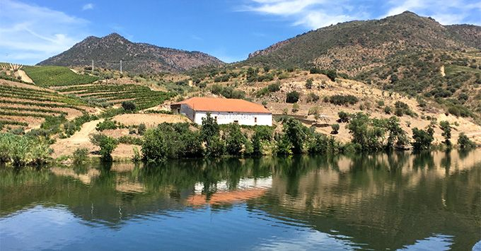 7 Reasons to Cruise Portugal's #Douro River - via CruiseCritic 26-07-2017 |  Steeply terraced hillsides unfold before you revealing verdant vines and sage-colored olive trees surrounding stark white wine estates with traditional clay roofs glowing burnt orange in the sun; this is the Douro River Valley. Photo: 'Quinta' wine estate along the Douro