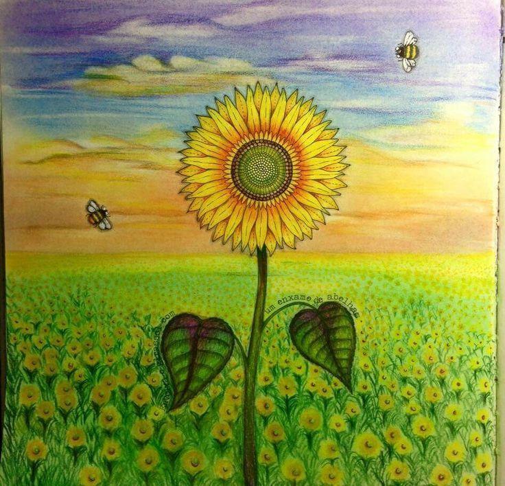 Secret Garden Coloring Sunflower