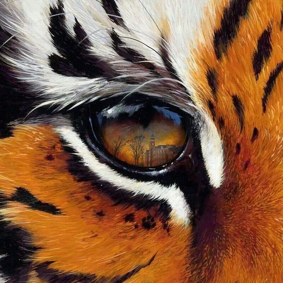 "Auburn Tigers: ""The Eye of The Tiger"
