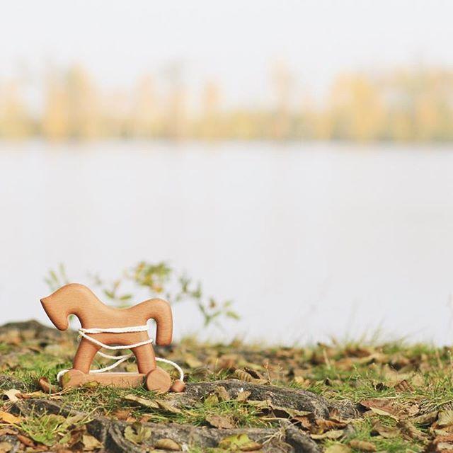 Доброе, нежное, тихое 🌾 Вчера с нами случилось прозрение☺️. Мы увидели насколько гармонично наши игрушки существуют в лесной среде, они словно бы там родились❤️🌿. Ведь именно это мы всем сердцем стремимся рассказать через наши изделия, что природа - главный наш творец, а мы подчёркиваем её красоту и совершенство через формы и текстуры🙌🏻. Соприкасаясь с нашими игрушками, малыш впитывает это всё без слов ❤️ Любим, греем)! Лошадку можно найти на нашем сайте, активная ссылка в профиле, или…