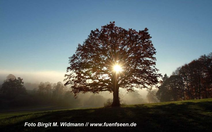 Wandertipp Andechs Ammersee
